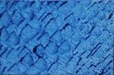 Blue Series - 3